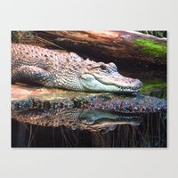crocodile Canvas Prints featuring Crocodile by Carole Ballereau