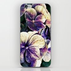 Hortensia flowers in vintage grunge watercoloring style iPhone & iPod Skin