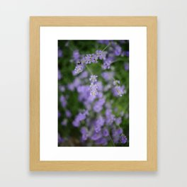 Bees and Lavander Framed Art Print