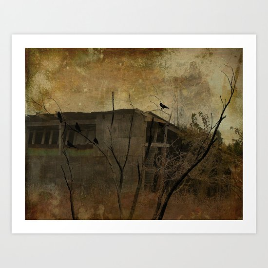 Grungy Old Shed Art Print