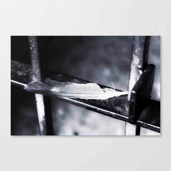 Caged bird free. Canvas Print