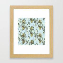Stockholm Garden Flower Blooming Framed Art Print