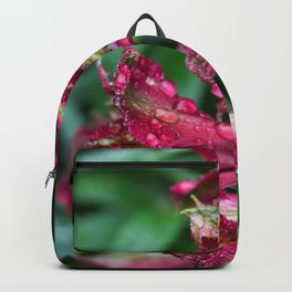 Magic Magenta Backpack