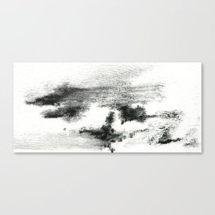 Black/white#2 Canvas Print