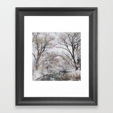 Winter Creek Canopy Framed Art Print