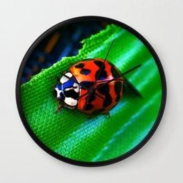Ladybug on Leave Wall Clock
