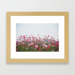 Flower photography by MIO ITO Framed Art Print