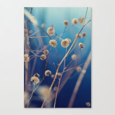 blue serenity Canvas Print
