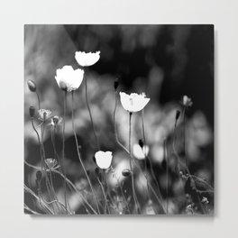 White Poppy Flowers in Black and White #decor #society6 Metal Print