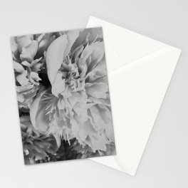 Peonies in Black and White Stationery Cards