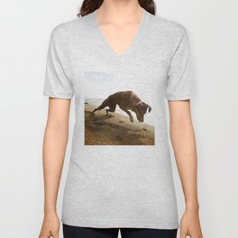 Dogs with the game face on .45 Unisex V-Neck