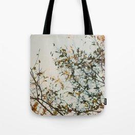 Gold & Warm Tote Bag
