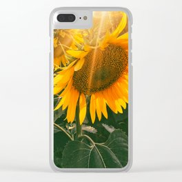 summer in the fields Clear iPhone Case