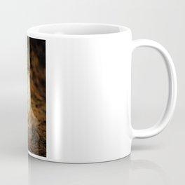 Phallus Impudicus Coffee Mug