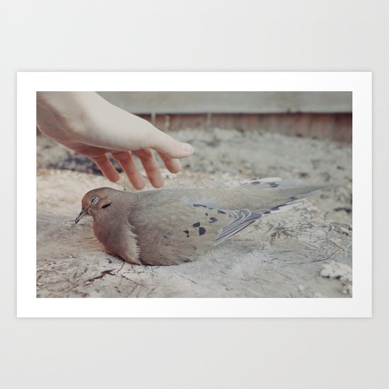 The protection of fragile things Art Print