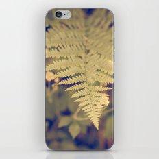 Forest Fern iPhone & iPod Skin