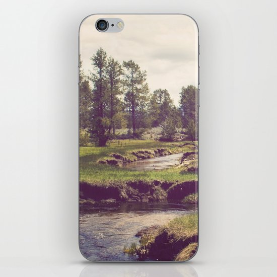 Down Time's Quaint Stream iPhone & iPod Skin
