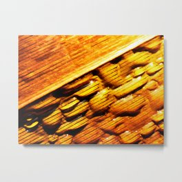 Wet and Dry Metal Print