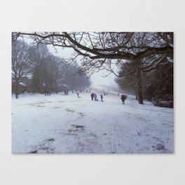 Sledging Slope Canvas Print