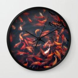 NATURE - FISH - WATER - ANIMALS Wall Clock
