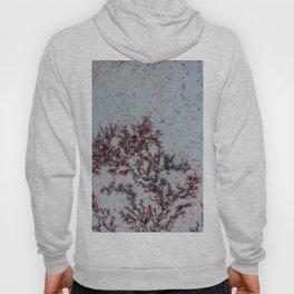 Sakura Moss Agate Hoody