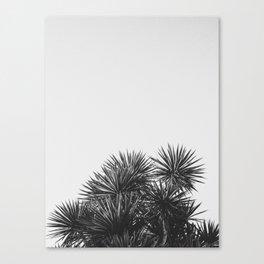 SUMMER NIGHTS Canvas Print