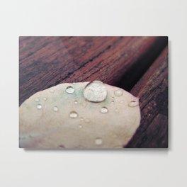 Leaf with rain droplets 2 Metal Print