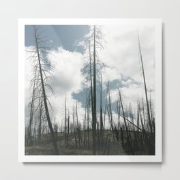 august in the valley v.1 Metal Print