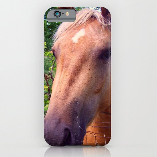 Behind the Fence iPhone & iPod Case