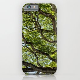river of branches iPhone Case