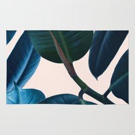 Ficus elastica 2 Rug