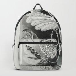 Scientific moth illustrations by Ernst Haeckel Backpack