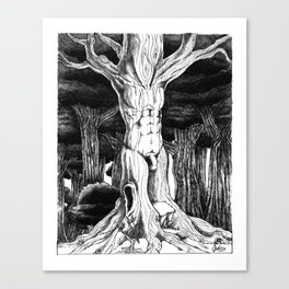 Male Dryad Canvas Print