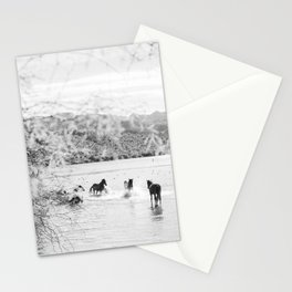 fun in the water Stationery Cards