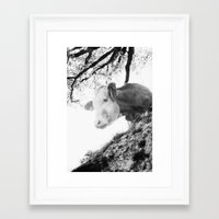 cow Framed Art Prints featuring COW by Julia Aufschnaiter