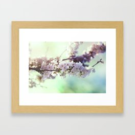 Sakura sakura Framed Art Print