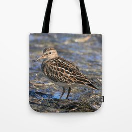 Party with Pectoral Sandpipers Tote Bag