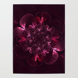 Flower In Bordo Poster