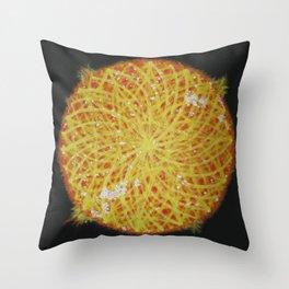 Le Sol Throw Pillow