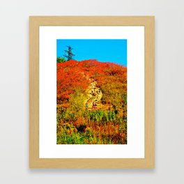 Hiking Framed Art Print