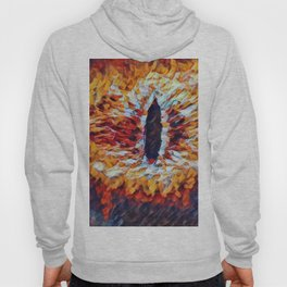 Lord Rings Eye Artistic Illustration Material Presence Style Hoody