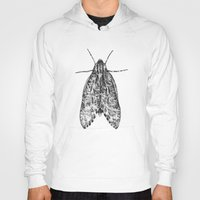 moth Hoodies featuring moth by Eric Tiedt