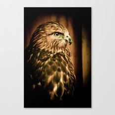 Hawk Eye Canvas Print
