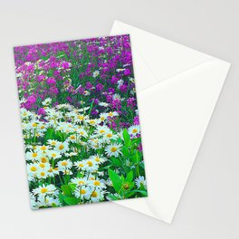 Wildflower White and Purple Daisies in A Meadow Stationery Cards