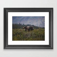 Gizzly Bear Framed Art Print
