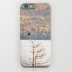 Fall Bird iPhone 6s Slim Case