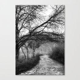 On A Dark Path Canvas Print