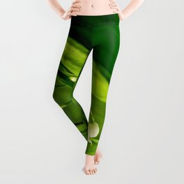 Craving to a beauty Leggings