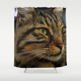 Aslan The Long Haired Tabby Cat Shower Curtain