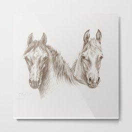 Two Horses Pencil drawing Metal Print